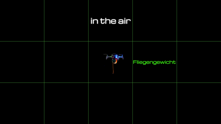 Large fliegengewicht  intro stills